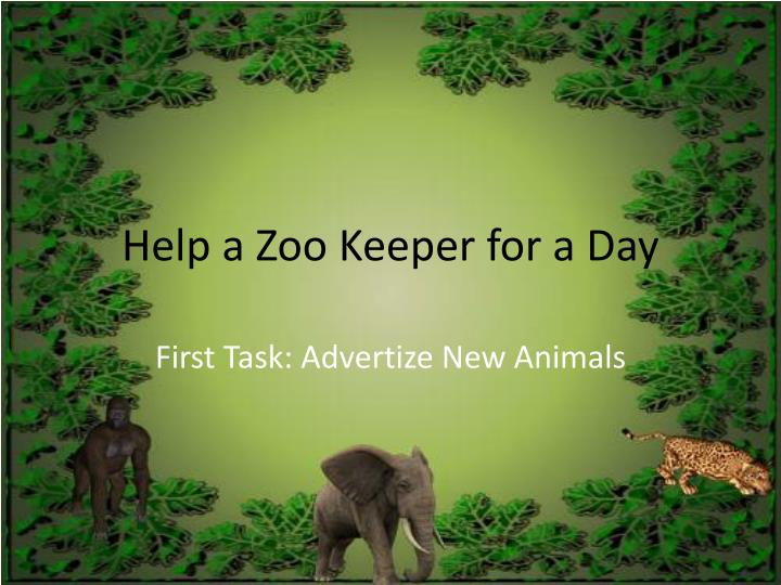 Help a zoo keeper for a day