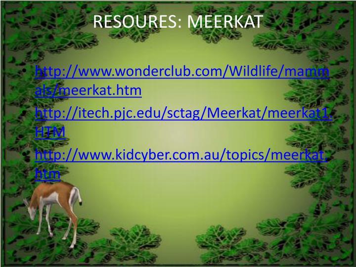 RESOURES: MEERKAT
