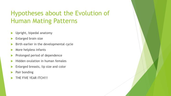 Hypotheses about the Evolution of