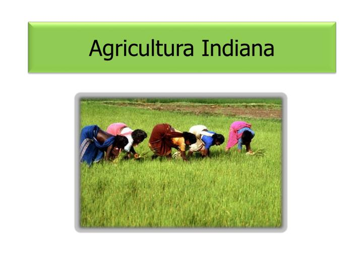 Agricultura Indiana