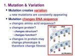 1 mutation variation