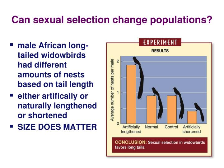 Can sexual selection change populations?