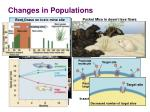 changes in populations