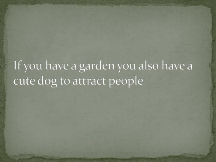 If you have a garden you also have a cute dog to attract people