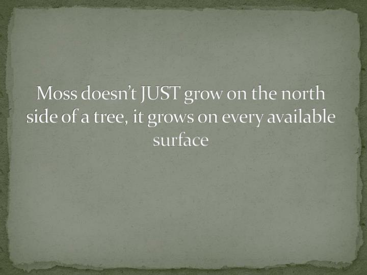 Moss doesn't JUST grow on the north side of a tree, it grows on every available surface