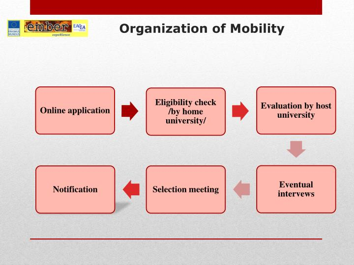 Organization of Mobility