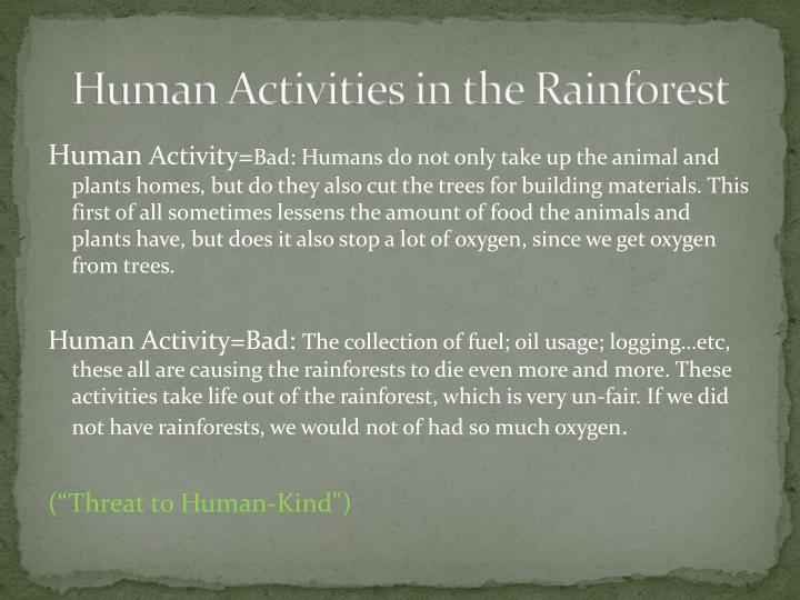 Human Activities in the Rainforest