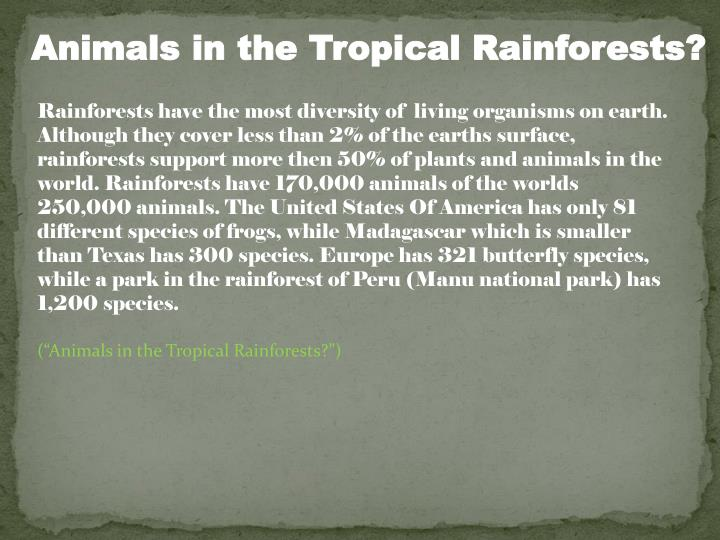 Animals in the Tropical Rainforests?