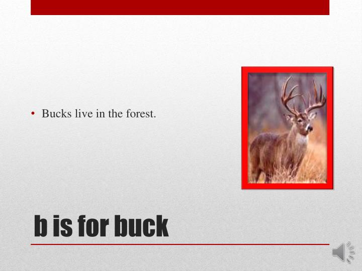 B is for buck