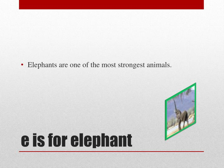 Elephants are one of the most strongest animals.
