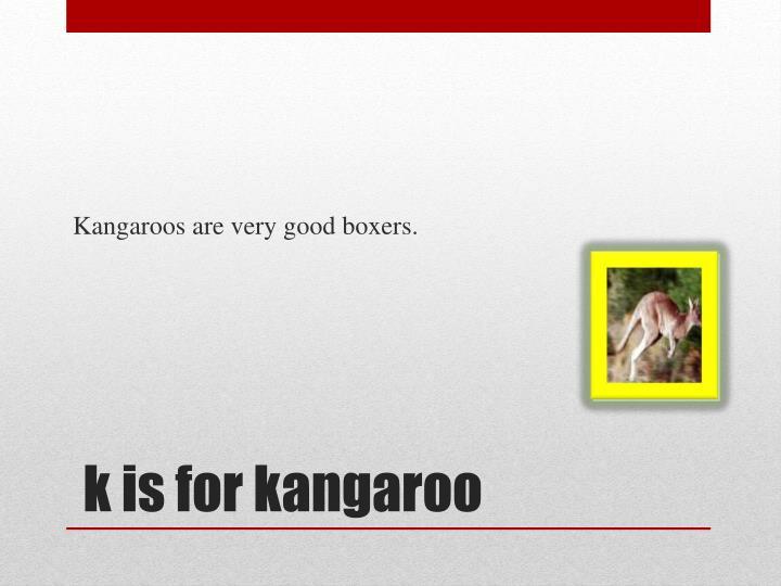 Kangaroos are very good boxers.