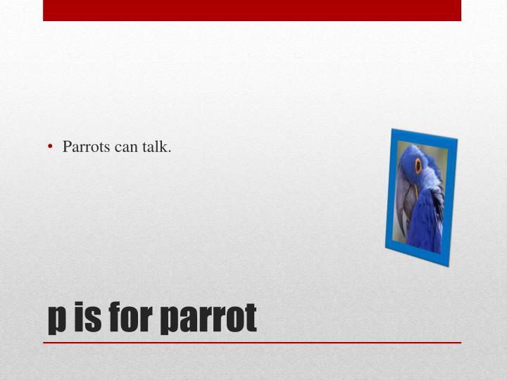 Parrots can talk.