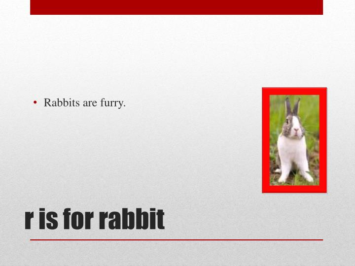 Rabbits are furry.