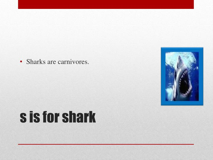 Sharks are carnivores.