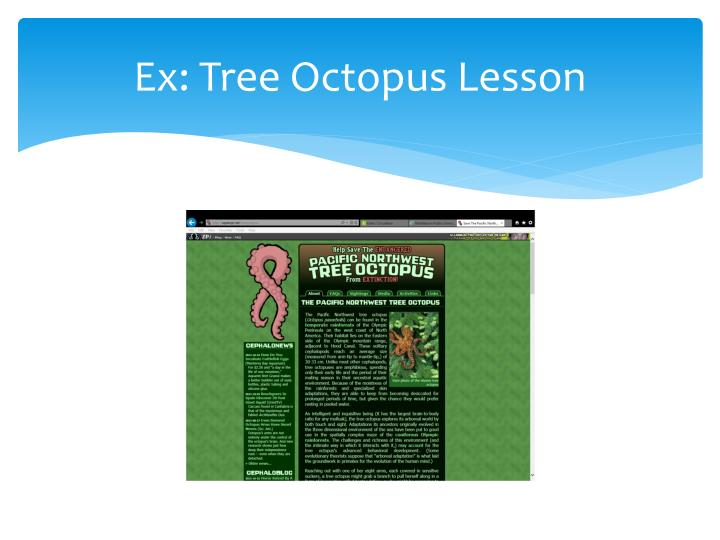 Ex: Tree Octopus Lesson
