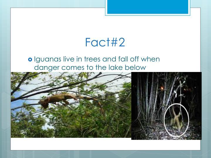 Fact#2