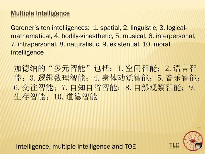 Gardner's ten intelligences