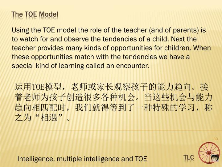 Using the TOE model the role of the teacher (and of parents) is to watch for and observe the tendencies of a child. Next the teacher provides many kinds of opportunities for children. When these opportunities match with the tendencies we have a special kind of learning called an encounter.