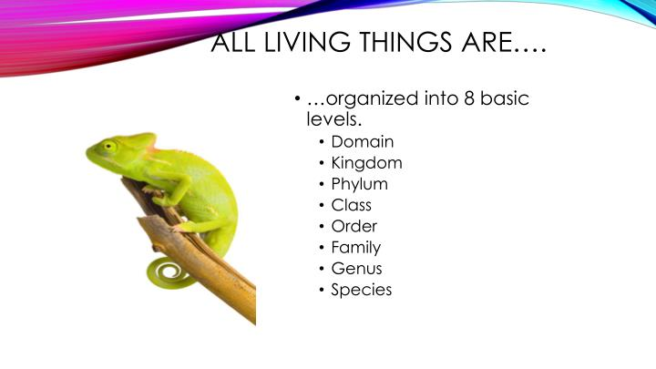 All living things are