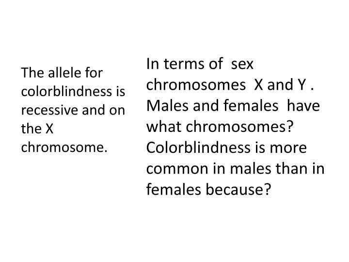 In terms of  sex chromosomes  X and Y . Males and females  have what chromosomes?