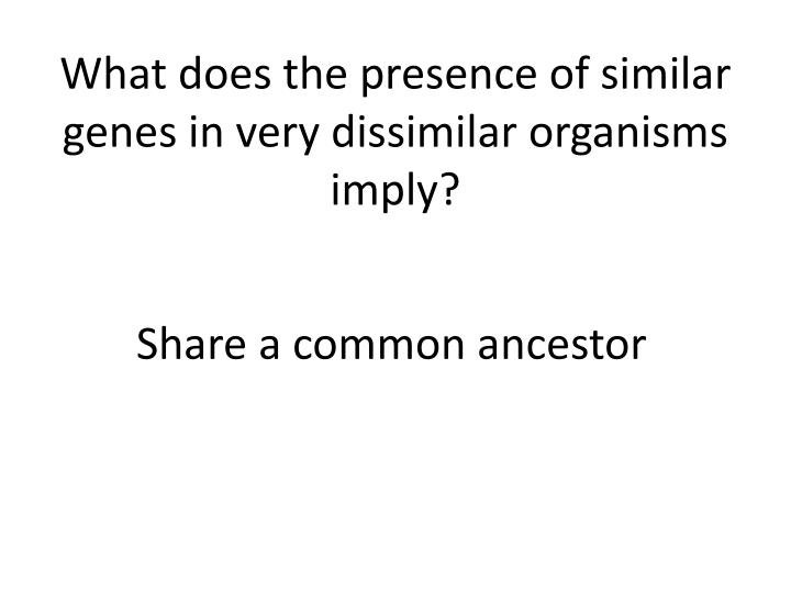 What does the presence of similar genes in very dissimilar organisms imply?