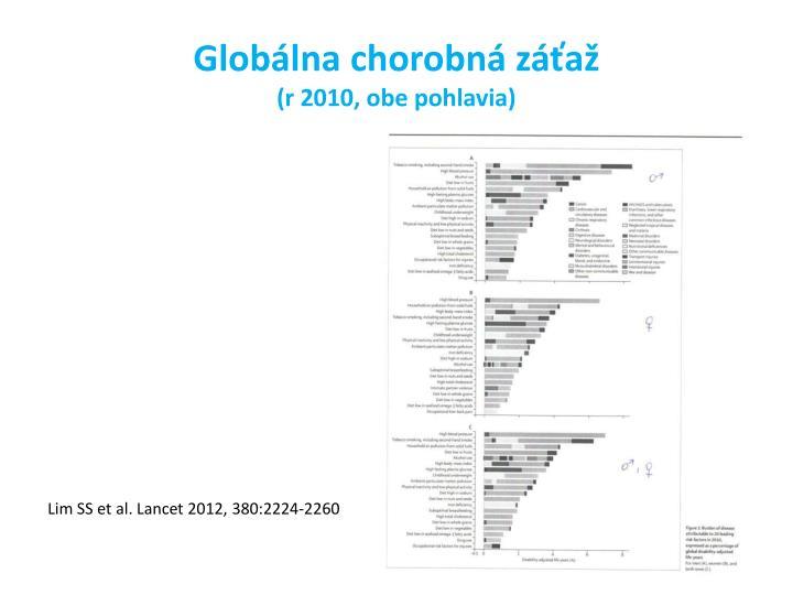Globálna chorobná záťaž