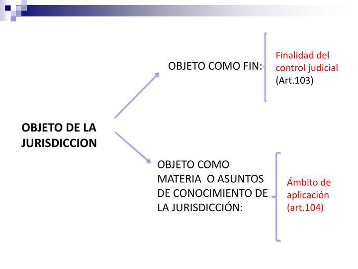 Finalidad del control judicial