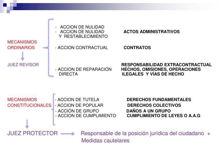 -   ACCION DE NULIDAD