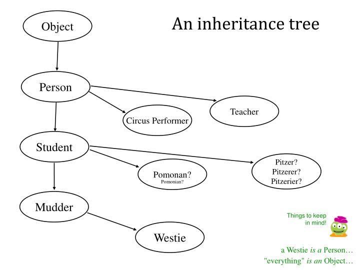 An inheritance tree