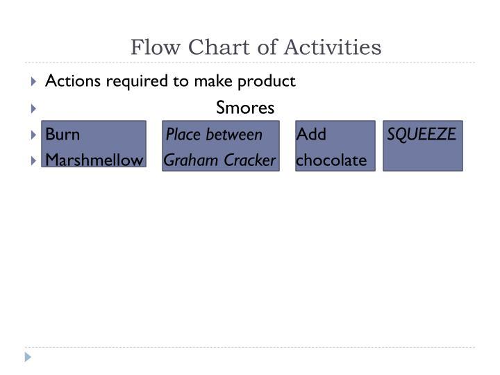 Flow Chart of Activities
