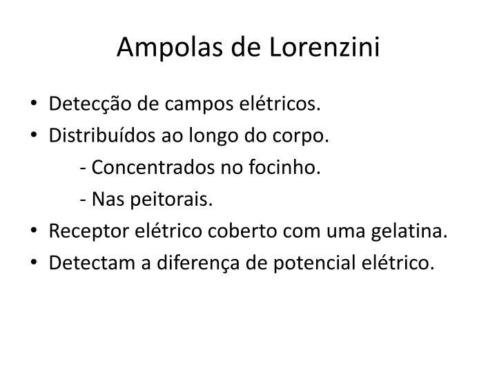 Ampolas de
