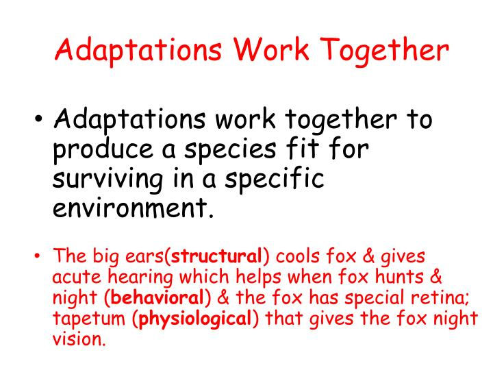 Adaptations Work Together