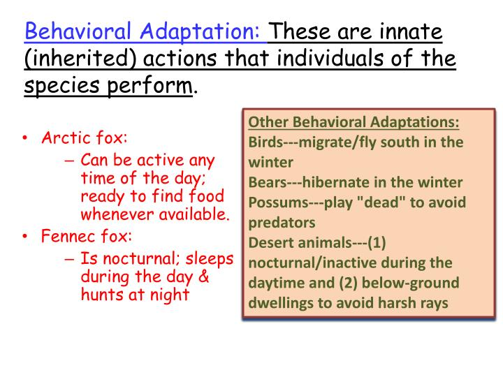 Behavioral Adaptation: