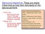 behavioral adaptation these are innate inherited actions that individuals of the species perform