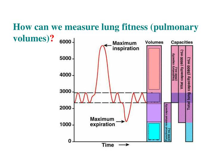 How can we measure lung fitness (pulmonary volumes)
