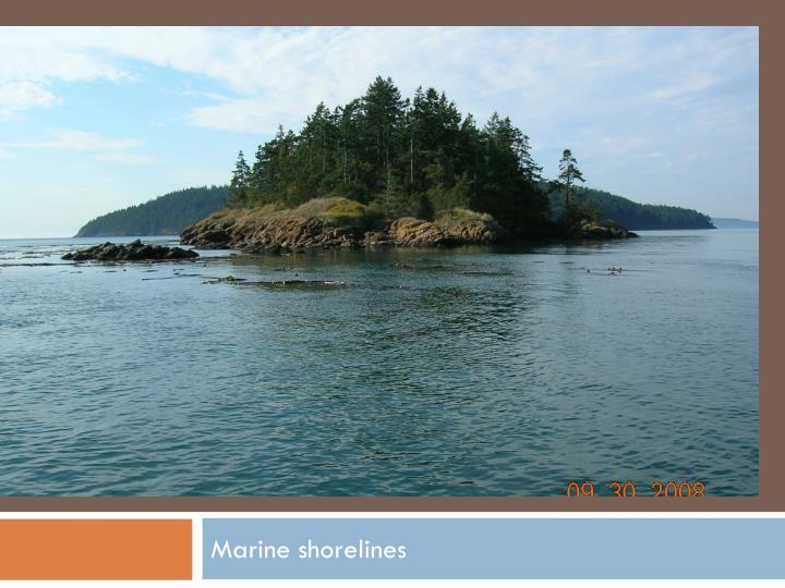 Marine shorelines