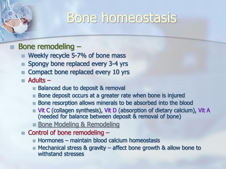 Bone homeostasis