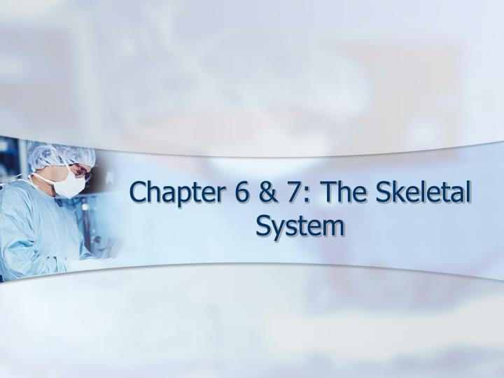 Chapter 6 7 the skeletal system