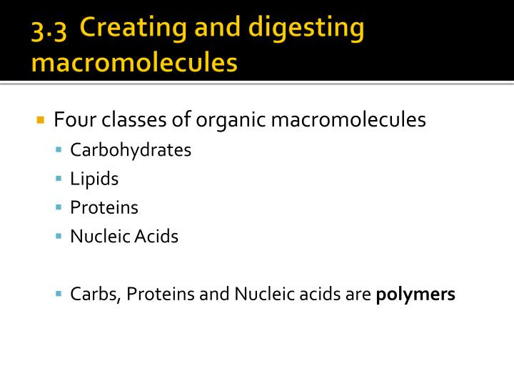 3.3  Creating and digesting macromolecules