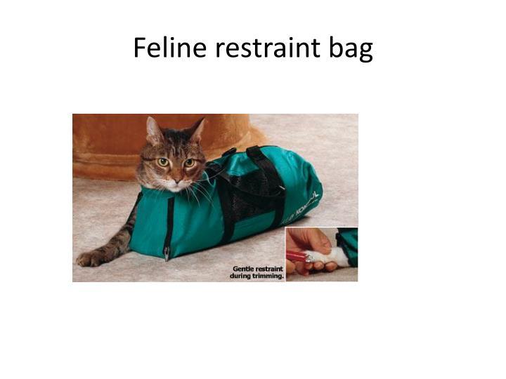 Feline restraint bag