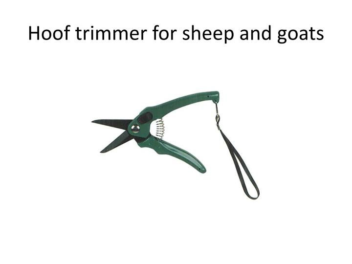 Hoof trimmer for sheep and goats