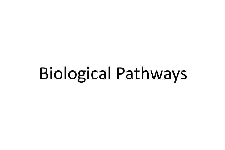 Biological Pathways