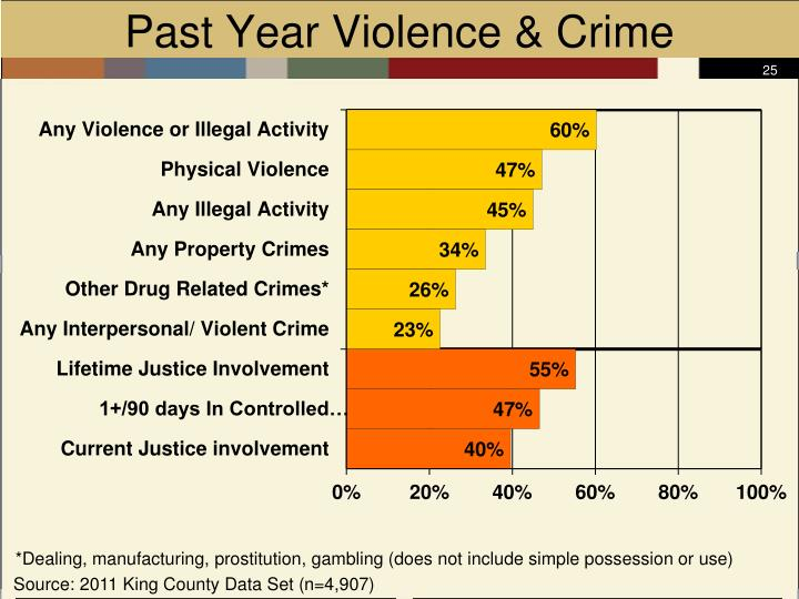 Past Year Violence & Crime