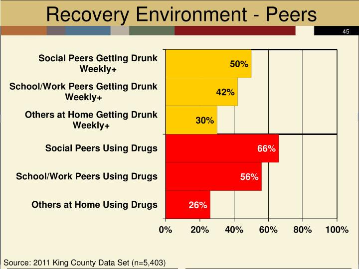 Recovery Environment - Peers