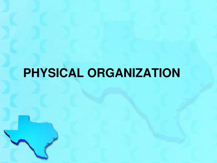 Physical Organization