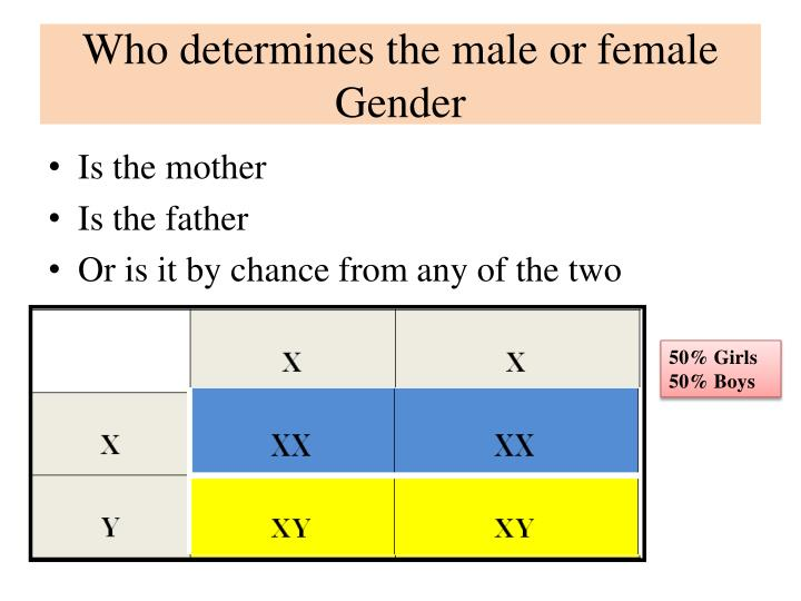 Who determines the male or female Gender