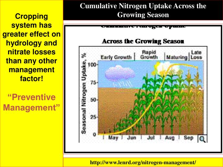 Cumulative Nitrogen Uptake Across the Growing