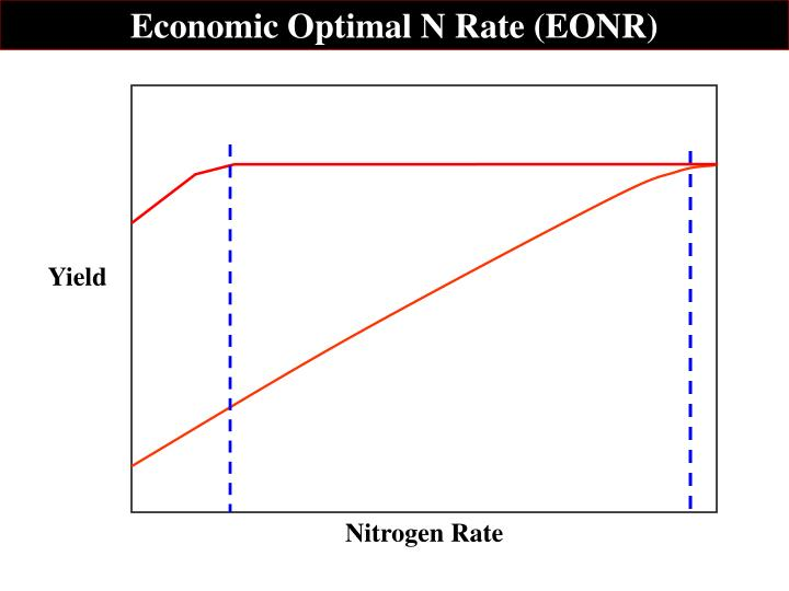 Economic Optimal N Rate (EONR)