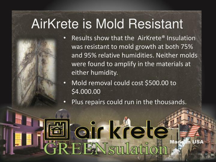 AirKrete is Mold Resistant