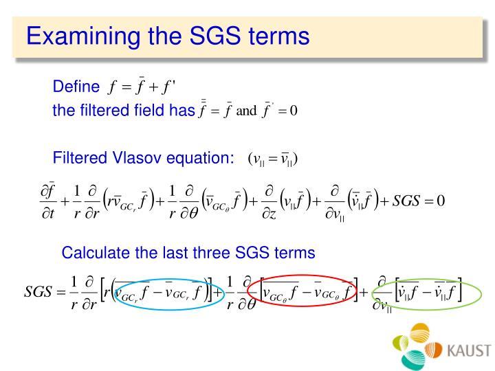 Examining the SGS terms